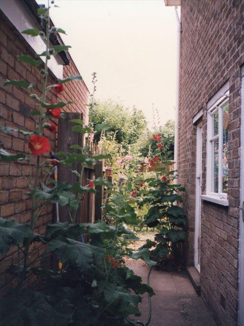 イギリスホームステイ先二軒目、裏庭への道