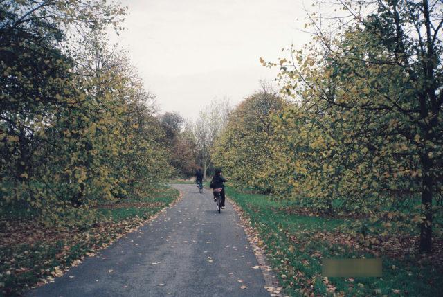 秋のケンブリッジ