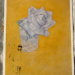 Piet Mondrian : White Rose in Glass .after 1921 絵葉書